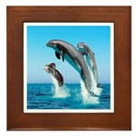 Doxie & Dolphins Framed Tile