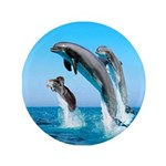 Doxie & Dolphins 3.5