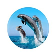 """Doxie & Dolphins 3.5"""" Button"""