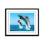 Doxie & Dolphins Framed Panel Print