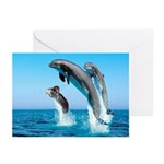 Doxie & Dolphins Greeting Cards (Pk of 10)