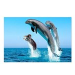 Doxie & Dolphins Postcards (Package of 8)