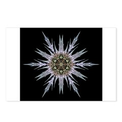 Sea Holly I Postcards (Package of 8)