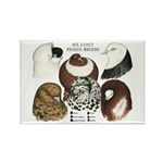 Six Pigeons Rectangle Magnet (10 pack)