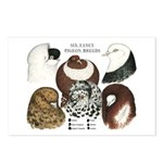 Six Pigeons Postcards (Package of 8)