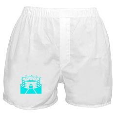 Cyan Stadium Boxer Shorts