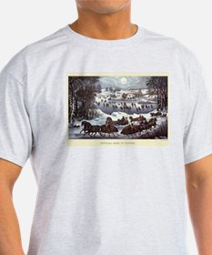 Central Park in Winter T-Shirt