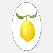 Lemon Oval Decal