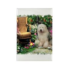 Old English Sheepdog Rectangle Magnet (10 pack)