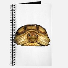 Baby Sulcata Tortoise Journal