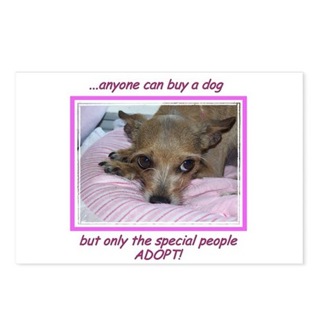 Only SPECIAL people adopt! Postcards (Package of 8