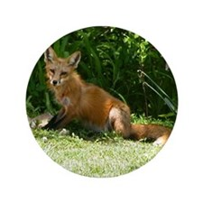 "Red Fox 3.5"" Button"