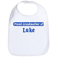 Grandmother of Luke Bib