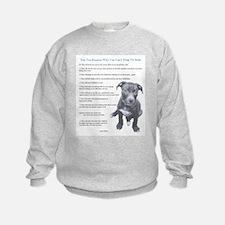 Top 10 Reasons Sweatshirt