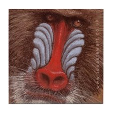 Mandrill Tile Coaster