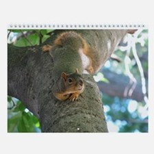 Cute Squirrel funny Wall Calendar