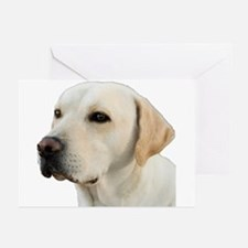 Yellow Lab Head Greeting Cards
