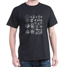 Harmonic Solids Black T-Shirt