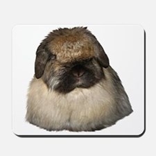 Tort Fuzzy Lop Mousepad