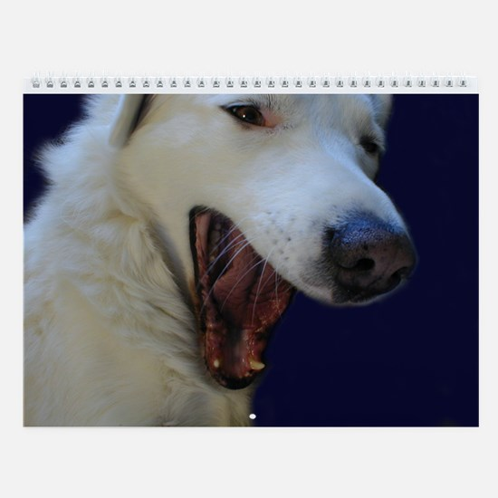 Dolly the Beautiful Akbash Wall Calendar