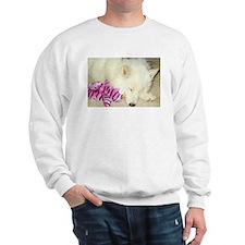 Cool Az Sweatshirt