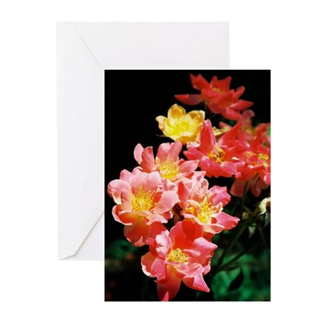 Roses - Greeting Cards (Pk of 10)