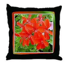 Geranium Glow Throw Pillow