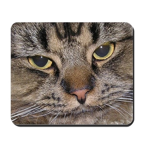 Stubby Cat Mousepad