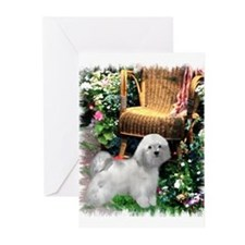 Havanese Art Greeting Cards (Pk of 10)