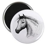 Black Line Horse Magnet