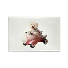 Cute Dog car Rectangle Magnet