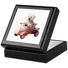 Cute Pink poodle Keepsake Box
