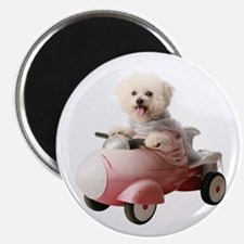 "Cute Dog car 2.25"" Magnet (10 pack)"