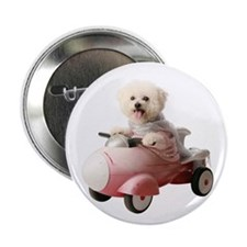 "Funny Bichon frise 2.25"" Button (10 pack)"