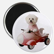 """Dog car 2.25"""" Magnet (100 pack)"""