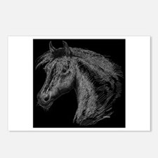 White Line Horse Postcards (Package of 8)