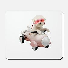 Bichon Fun #4 Mousepad