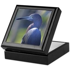 Little Blue Heron Portrait - Keepsake Box