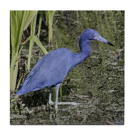 Little Blue Heron -Tile Coaster