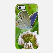 Blue Butterfly Itouch2, Itouch iPhone 7 Tough Case