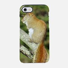 Red Squirrel iPhone 7 Tough Case