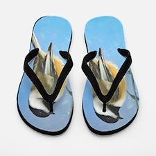 Chickadee on Feeder Flip Flops
