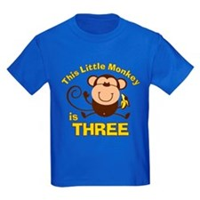 Little Monkey 3rd Birthday Boy T