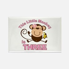 Little Monkey 3rd Birthday Girl Rectangle Magnet