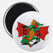 Dragon D Magnet