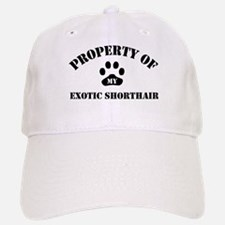 My Exotic Shorthair Baseball Baseball Cap