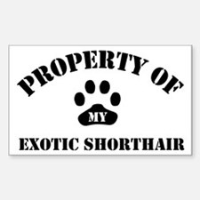 My Exotic Shorthair Rectangle Decal