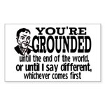 You're Grounded! Rectangle Sticker 10 pk)