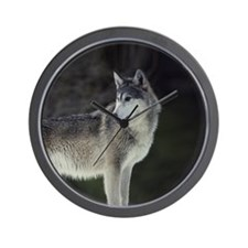"""Timber Wolf"" Wall Clock"