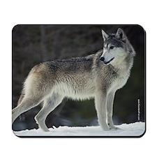 """Timber Wolf"" Mousepad"